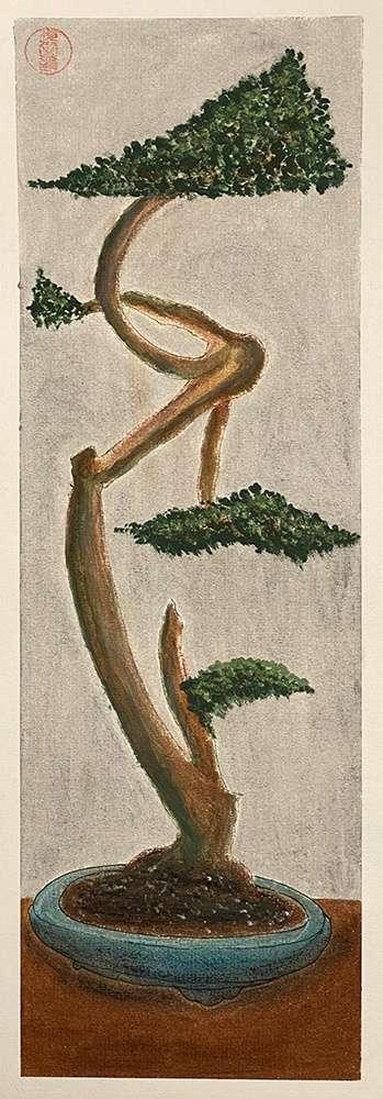 https://5elemteai.hu/wp-content/uploads/2021/05/bonsai.jpg